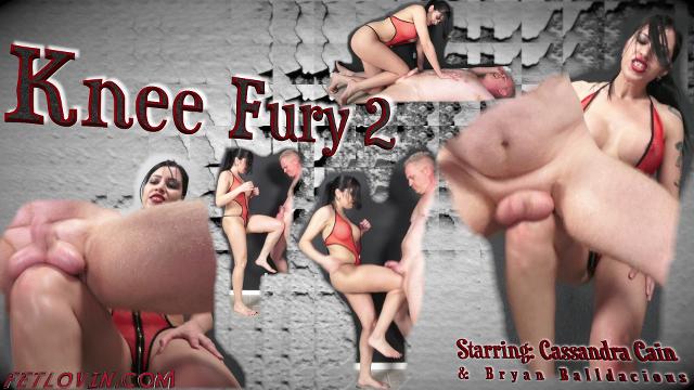 Knee Fury 2