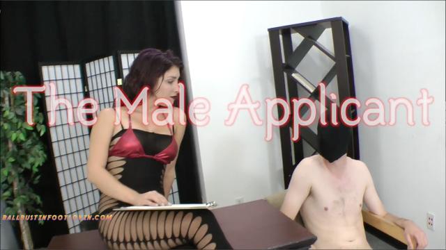 The Male Applicant